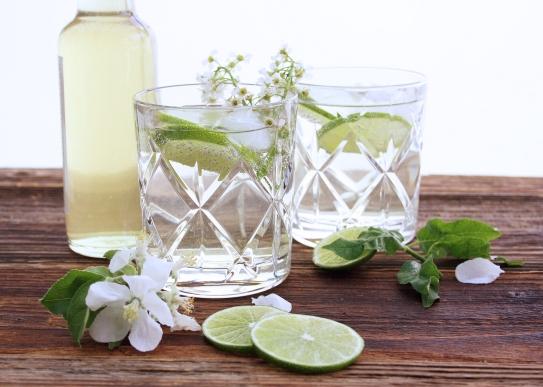 Spring-Gin-Tonic